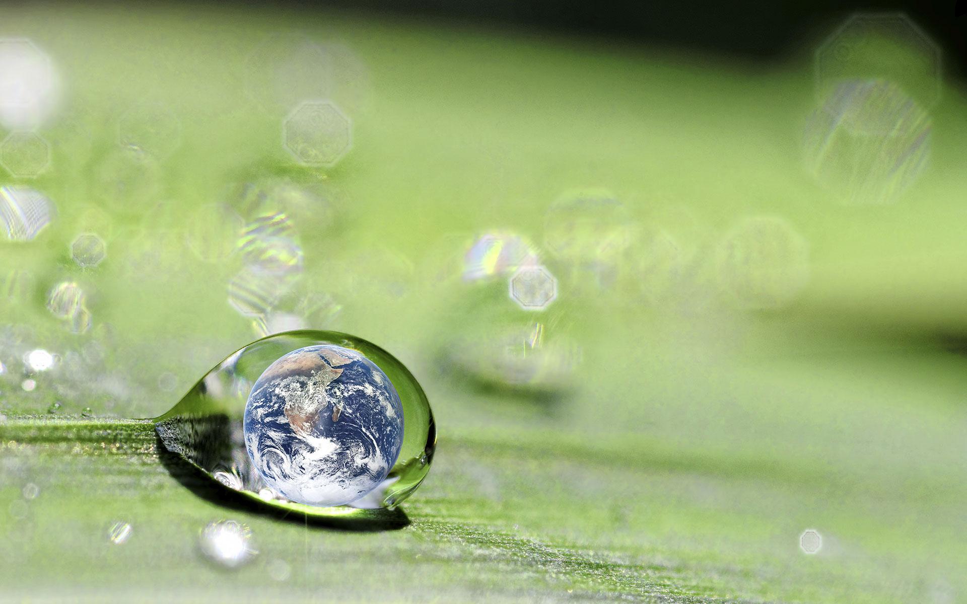 Nuove strategie per la sostenibilità della filiera alimentare